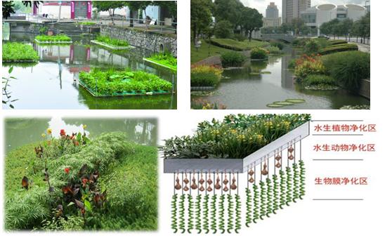 中山火炬开发区内河涌综合整治一期生态修复项目